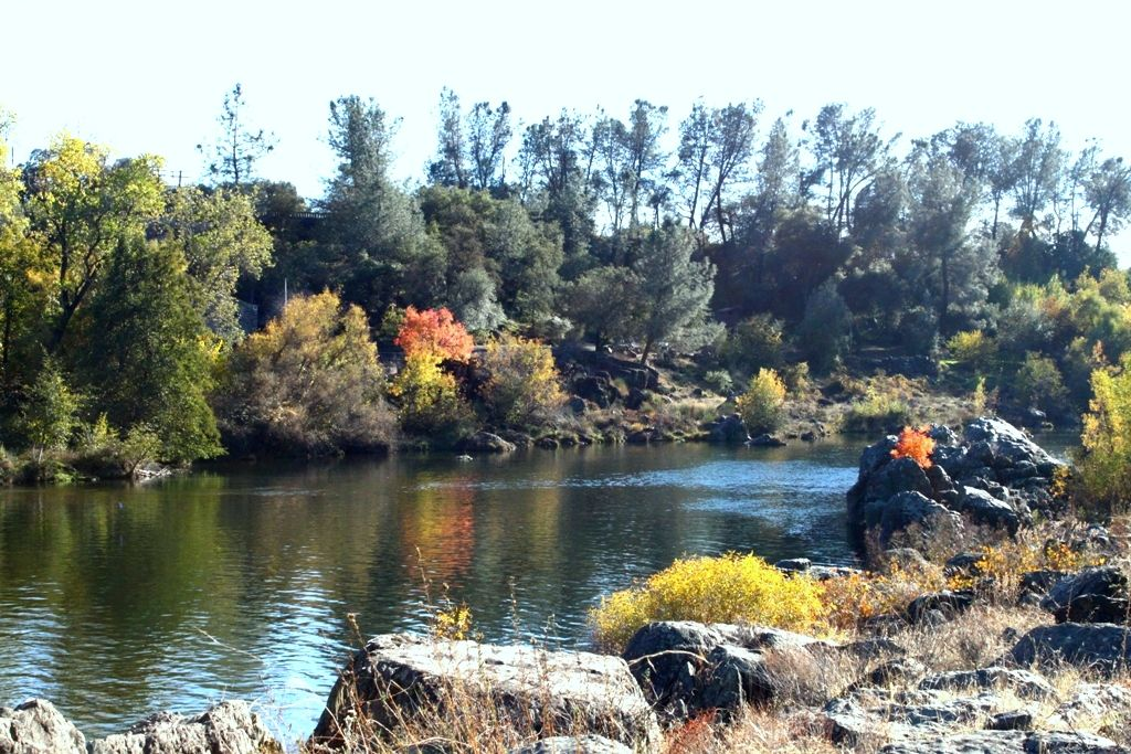 California water commission in oroville hears an update for Feather river salmon fishing