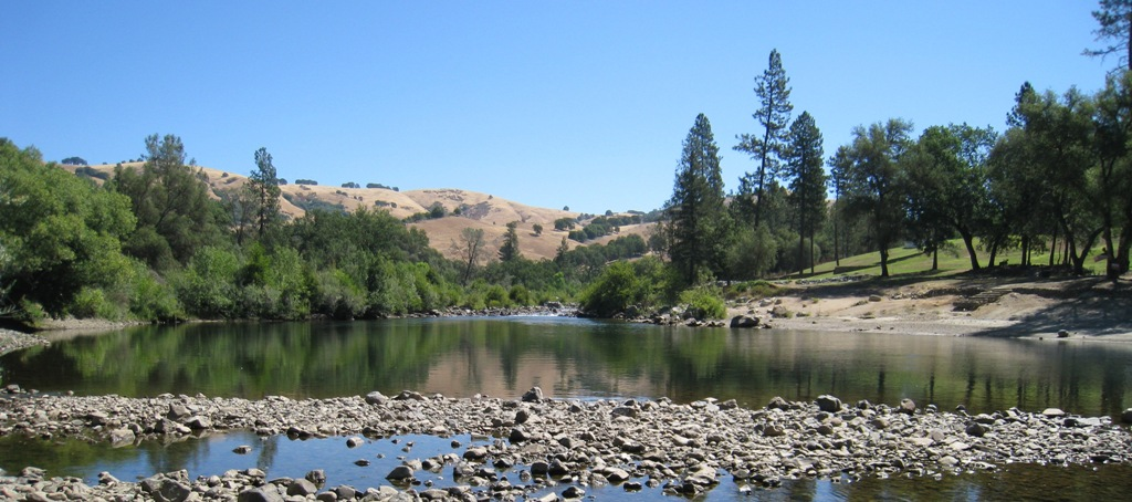 American River #2