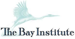 bay institute