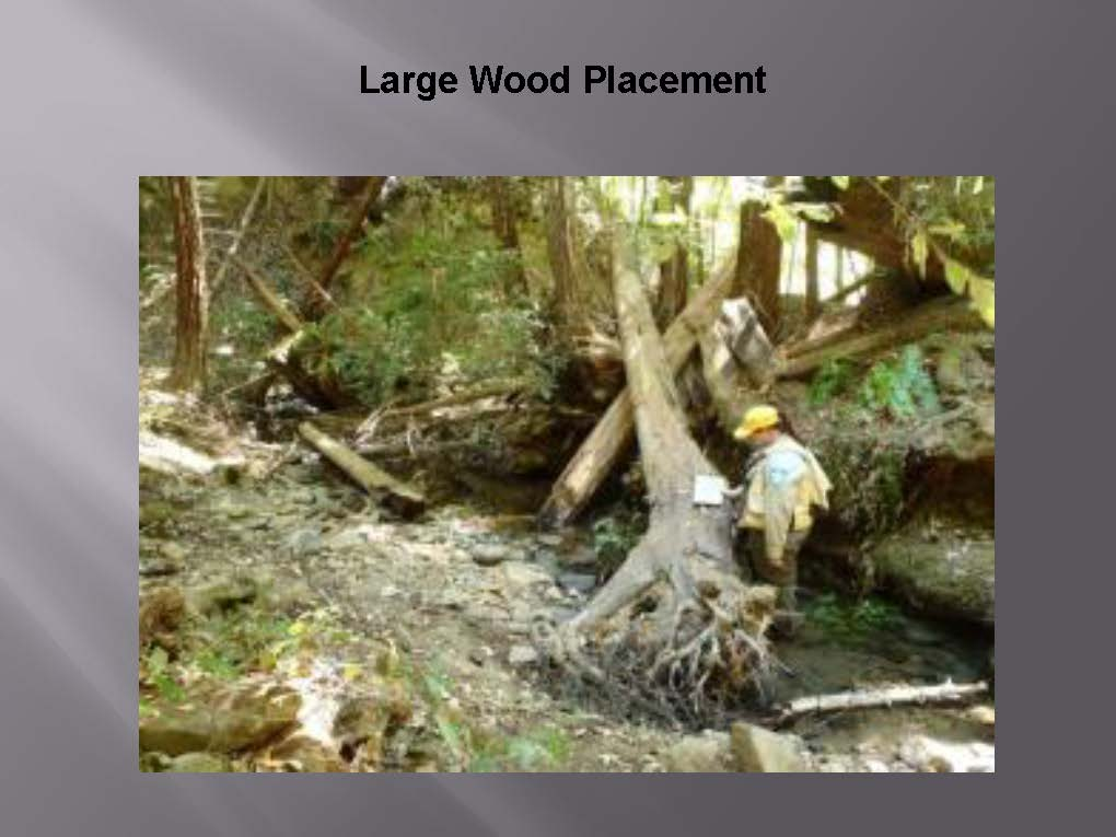 importance of watershed management pdf
