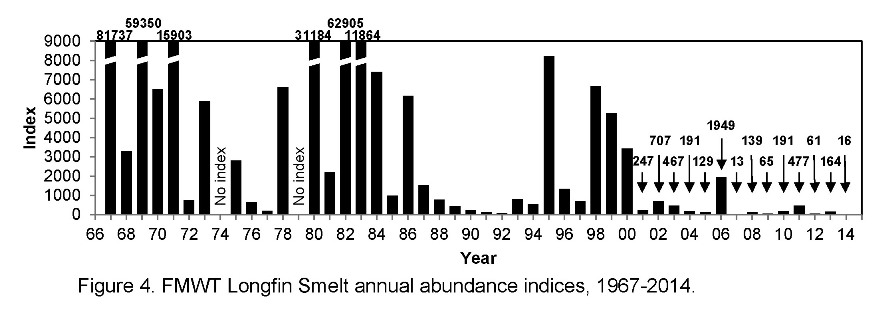 FMWT Longfin smelt index graphic