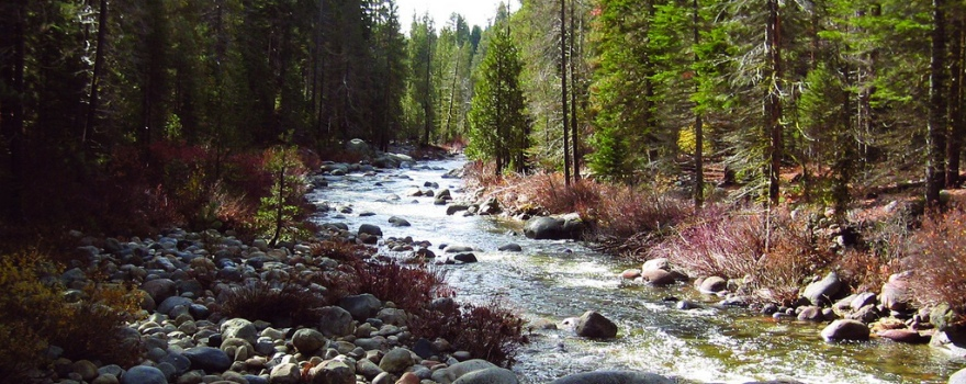 Dinkey Creek USFS Reg 5 Sliderbox