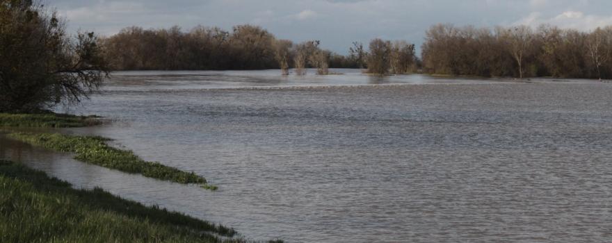 Flooded Fremont Weir Sliderbox