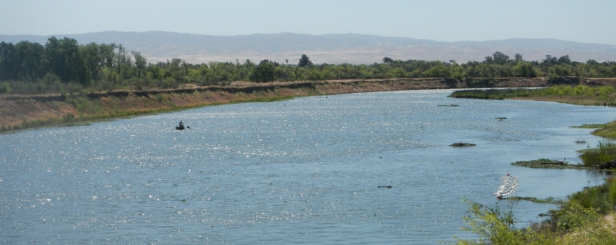 Science news and reports south delta survival studies for San joaquin river fishing