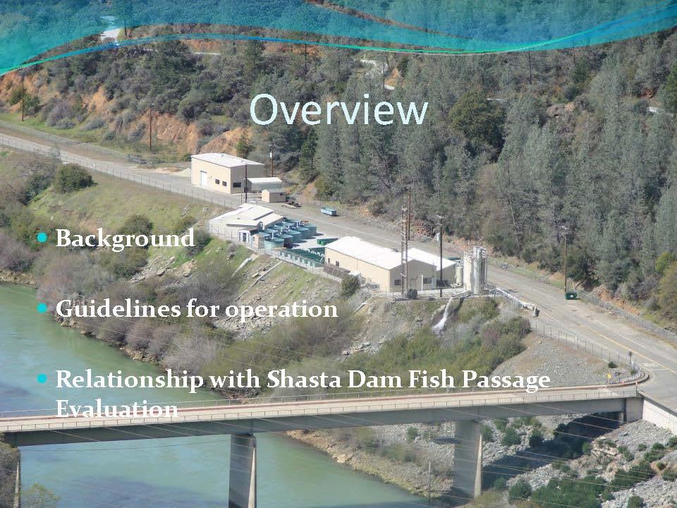 shasta dam fish passage evaluation winter run chinook may swim missouri fish ladder shasta dam fp_page_25