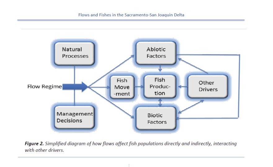 Flows and fishes table 2