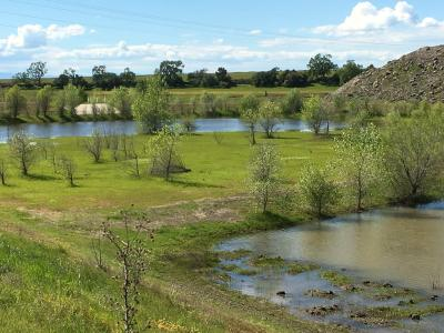 nrrwf-wetland-area_eric-miller