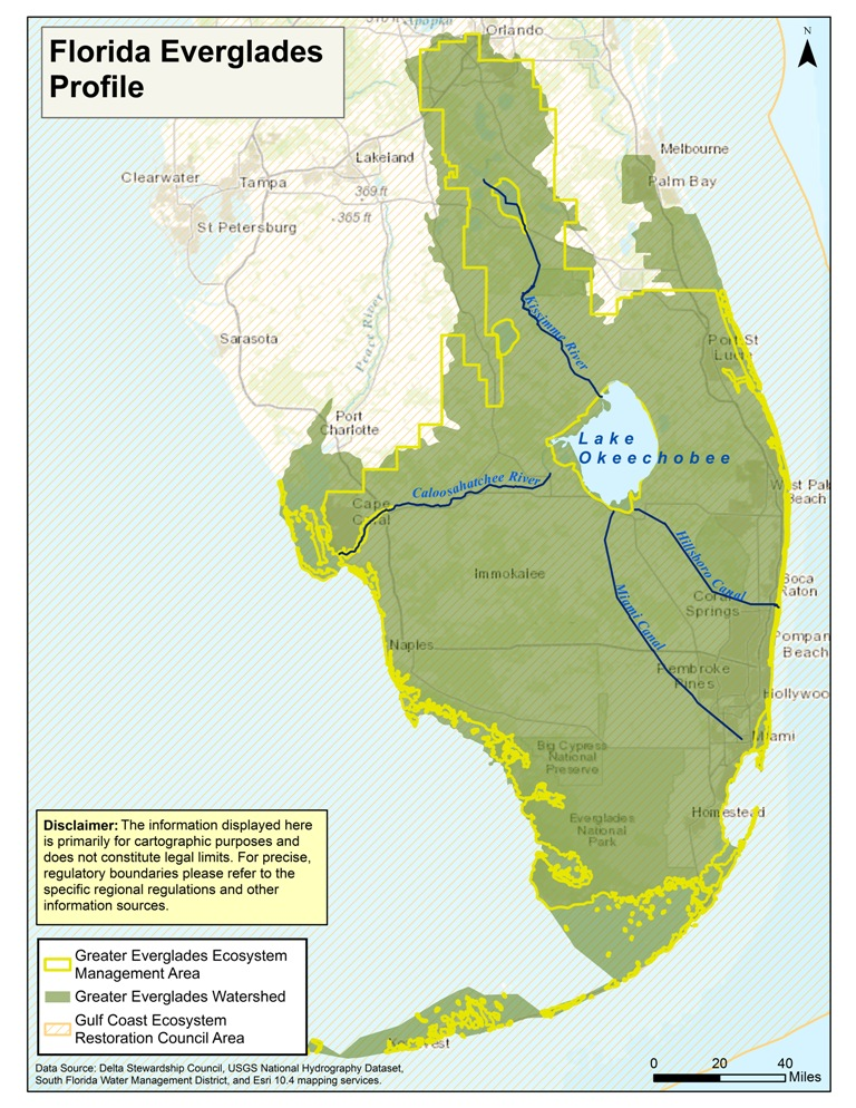 Greater Everglades Ecosystem MAVEN S NOTEBOOK Water news