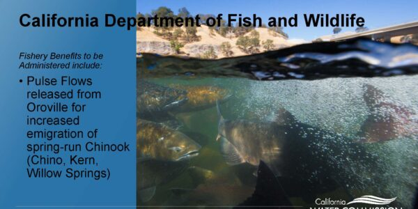 CWC WSIP Update PPT_Page_14